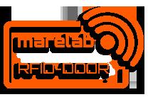 rfid-door system
